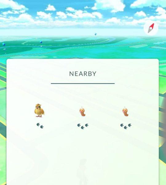 Где искать и как ловить покемонов в Pokemon GO? Игры - c17b2b4e-f618-4de5-8cfc-0f00fe4f77cf