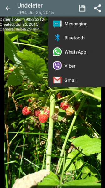 Как восстановить удаленные файлы на андроиде без ROOT? Приложения  - kak-vosstanovit-udalennye-fajly-na-androide-bez-root