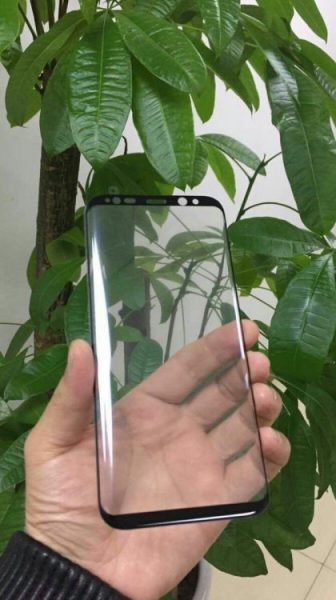 Фото передних панелей Galaxy S8 и S8 Plus Samsung  - gs8.-750