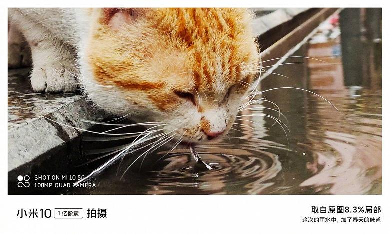 Особенности камеры Xiaomi Mi 10 Xiaomi  - EQeX_6nUcAAQDiS_large